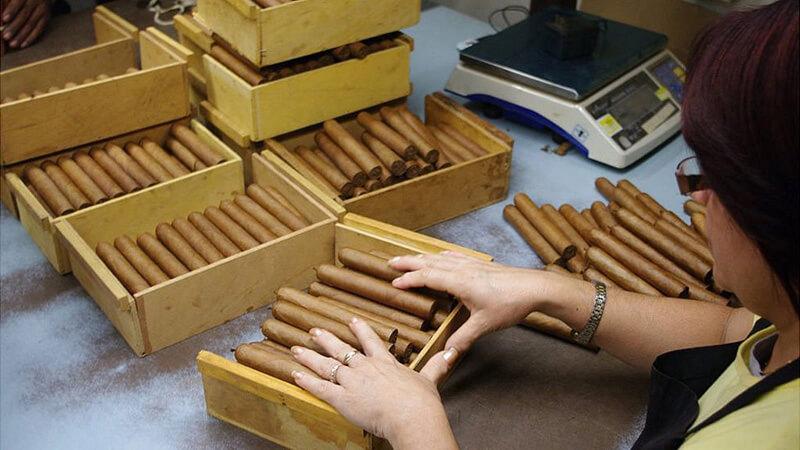 Quy trình làm ra điếu xì gà Cuba