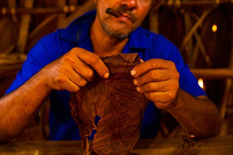 Ngành công nghiệp xì gà giúp Nicaragua trở nên giàu có