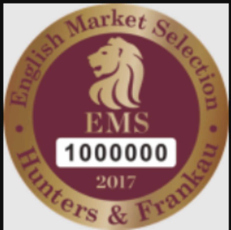 Mẫu EMS 2017